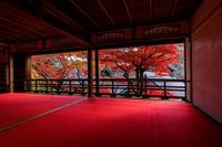 京の紅葉2018柳谷観音・上書院の紅葉 - 花景色-K.W.C. PhotoBlog