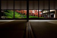 京の紅葉2018紅葉輝く光明院 - 花景色-K.W.C. PhotoBlog
