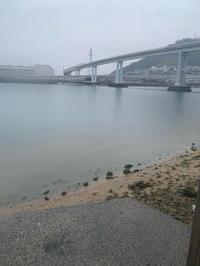 痛恨のバラし釣行 - 広島の〜中学生Seabass angler