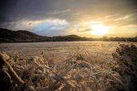 雪景色!~広沢池~ - Prado Photography!