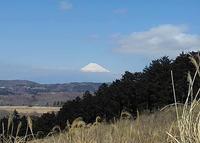 【散撮】山へ・・ - 人生を楽しくイきましょう!