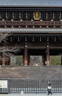 2019・如月の古都、早春見仏巡礼記(その5) - ろーりんぐ ☆ らいふ