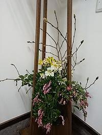 ギャラリ-のお花3月 - 小さいギャラリーおそごう通信