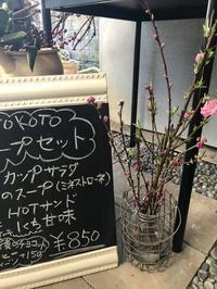 桃の節句・・・「桃の枝が届きました~♪お花を上げましょ・・・♫」編 - ドライフラワーギャラリー⁂ふくことカフェ