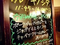 今週の昼カレー、夜カレー。 - 福岡 白金 カレーキノシタ    華麗なる転身