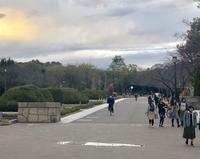 大阪城公園を散歩 - 笑わせるなよ泣けるじゃないか2