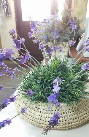 interior decor < lavender hat > -