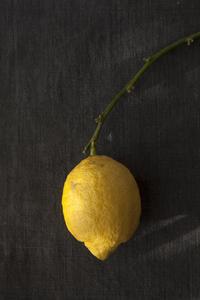 レモンの歳 - 日々の皿