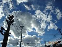 春のよろこび - 藍*aiの雑想記