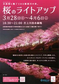 桜のライトアップ - 松露園 blog
