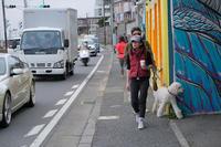 親子で写真勝負! - 鎌倉~江ノ島さんぽ #31 - - 夢幻泡影