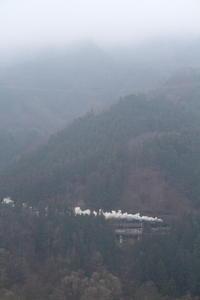 雨に白く霞む山と白煙- 2019年晩冬・秩父 - - ねこの撮った汽車