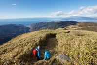 西伊豆の海と富士山を眺めながら歩く「達磨山」山頂~下山編 - Full of LIFE