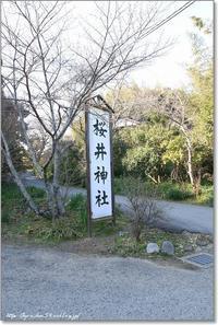桜井神社 - Have a nice day!