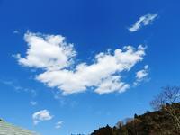 田んぼ準備着々と… - 千葉県いすみ環境と文化のさとセンター