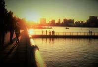 街角スナップ・ 東京お台場海浜公園の夕陽 - 天野主税写遊館
