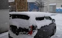 今日の雪事情 3/14 - へっぽこな・・