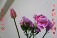 春色 - doppler