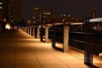 街の光☆彡 - DAIGOの記憶