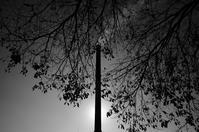 Kiryu#26 - Slow Photo Life