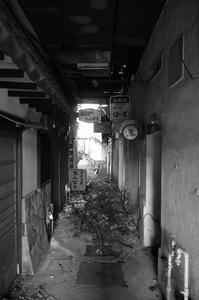 Kiryu#29 - Slow Photo Life