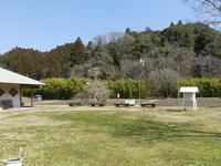 花、葉、鳥、虫、カエルたちも元気に動き始めました。 - 千葉県いすみ環境と文化のさとセンター