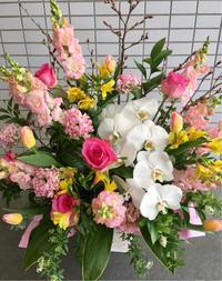 卒園式/お祝いアレンジメント - お花は幸せの贈りもの~Sweet Lees