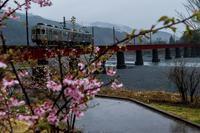 SL大井川鉄道 - toshi の ならはまほろば