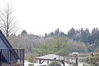 野呂山の鴨 - 静かに過ごす部屋