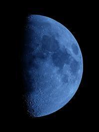 蒼い月 - ブナの写真日記