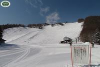 雪の森へ - 乗鞍高原カフェ&バー スプリングバンクの日記②