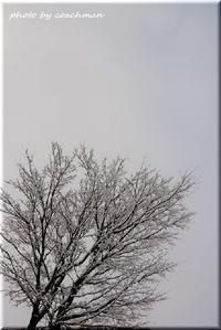 春遠し - 北海道photo一撮り旅