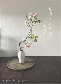月草sousow桜月はなの会 - なづな雑記