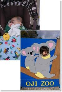【動物園】コープカードで割引♪王子はフラミンゴ克服✨ - 素敵な日々ログ+ la vie quotidienne +