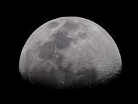 月齢9.5 - ブナの写真日記