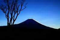 31年3月の富士(5)朝霧高原の雪煙の富士 - 富士への散歩道 ~撮影記~
