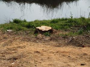 伐採 粉砕機 - 大工さんが木造住宅作ってるよ。