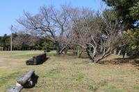 春の足音見た目 - 萩セミナーハウスBLOG