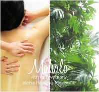 キャンペーンは4/30までです - aloha healing Makanoe
