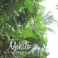 4周年🍀その1 - aloha healing Makanoe