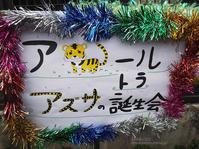 2019.3.17 宇都宮動物園☆トラのアズサちゃんお誕生日会!!! - 青空に浮かぶ月を眺めながら