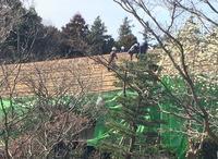 月1のボランティアレッスン〜茅葺き屋根の葺き替えを見ました〜 - わたしの好きな物