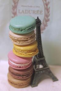 Ladurée Paris - ∞ infinity ∞