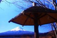 31年3月の富士(7)河口湖の富士 - 富士への散歩道 ~撮影記~