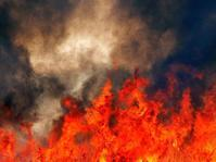 多々良沼の葦焼き2019(3)・・・熱いぞ!炎の屛風絵 - 『私のデジタル写真眼』