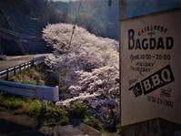 ~祝日営業&振替休日のお知らせ~ - CAFE&REST -BAGDAD-
