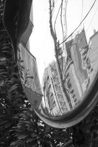 Distortion - jinsnap(weblog on a snap shot)