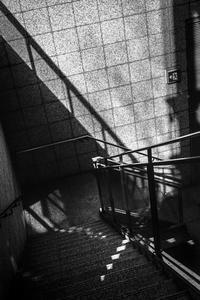 外部階段の踊り場で遊ぶ光蜥蜴 - Silver Oblivion