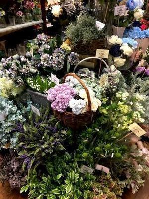 本町へ - アロマ菜々色日記☆ホリスティックアロマセラピー