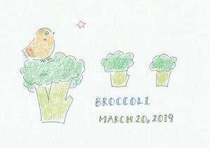 broccoli - なおこさんのほっと通信